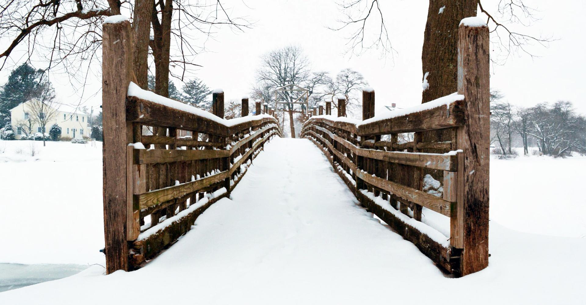 Snow-covered Escape